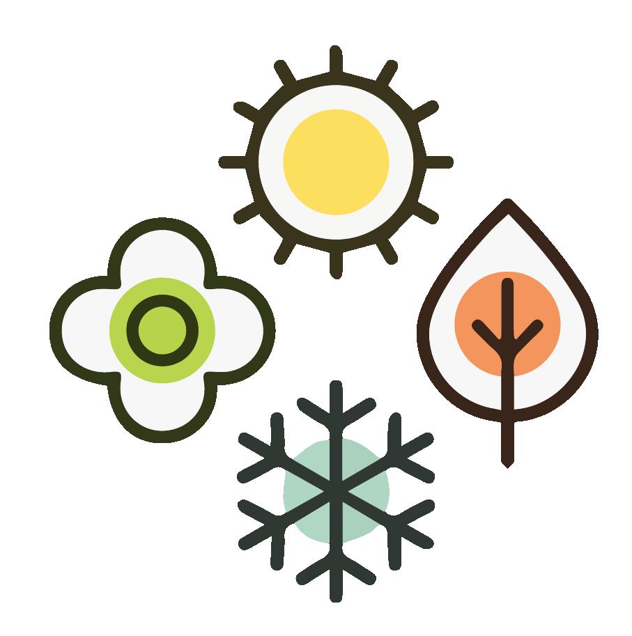 e size - gestione stagioni